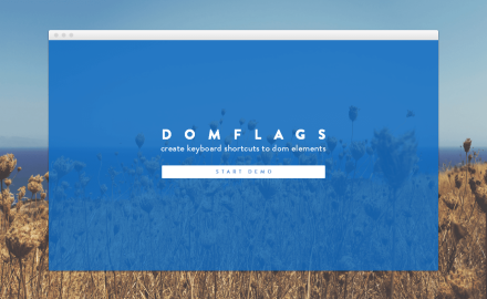 DomFlags - devtools extension to create keyboard shortcuts to DOM elements
